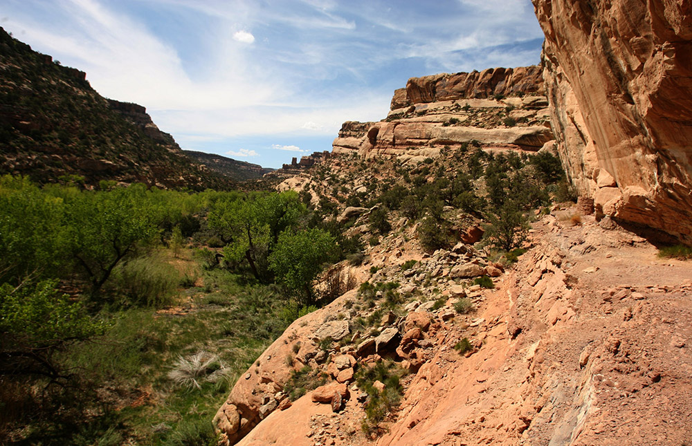 Arch Canyon