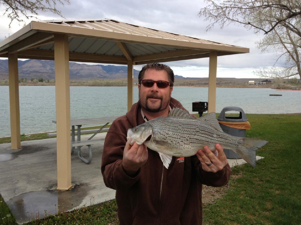 Biologists offer top fishing spots in utah the salt lake for Utah fish stocking report