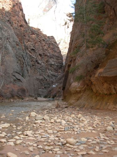 Gateway to the Narrows in Zion National Park