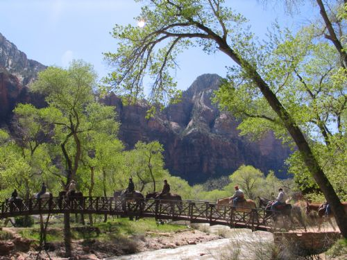  Virgin River bridge in Zion across from the lodge.